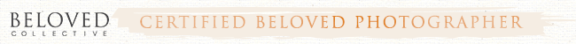 beloved-collective-photographer-horizontal